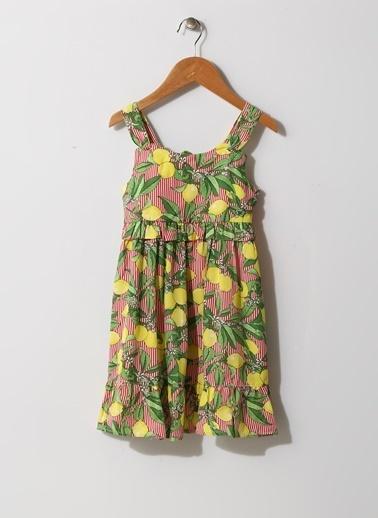 Limon Company Elbise Renkli